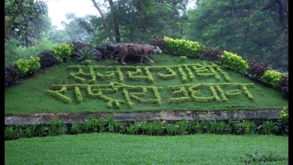 A grass cut calligraphy of Sanjay Gandhi National Park